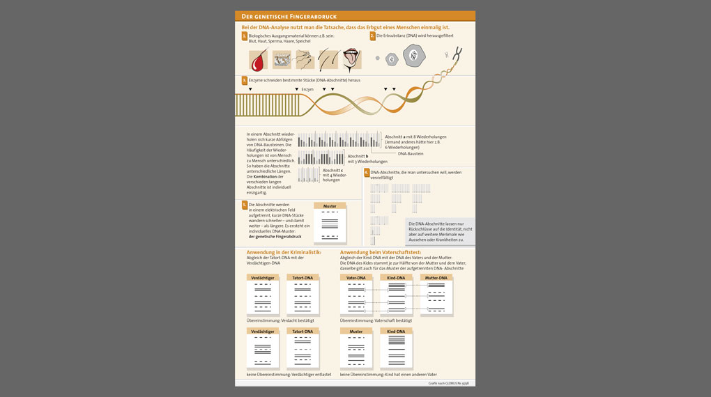 Grafik aus Publikation Biopolitik im Diskurs
